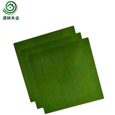 PP Surface Material Plastic Laminated Plywood E0 E1 Formaldehyde Emission Standards